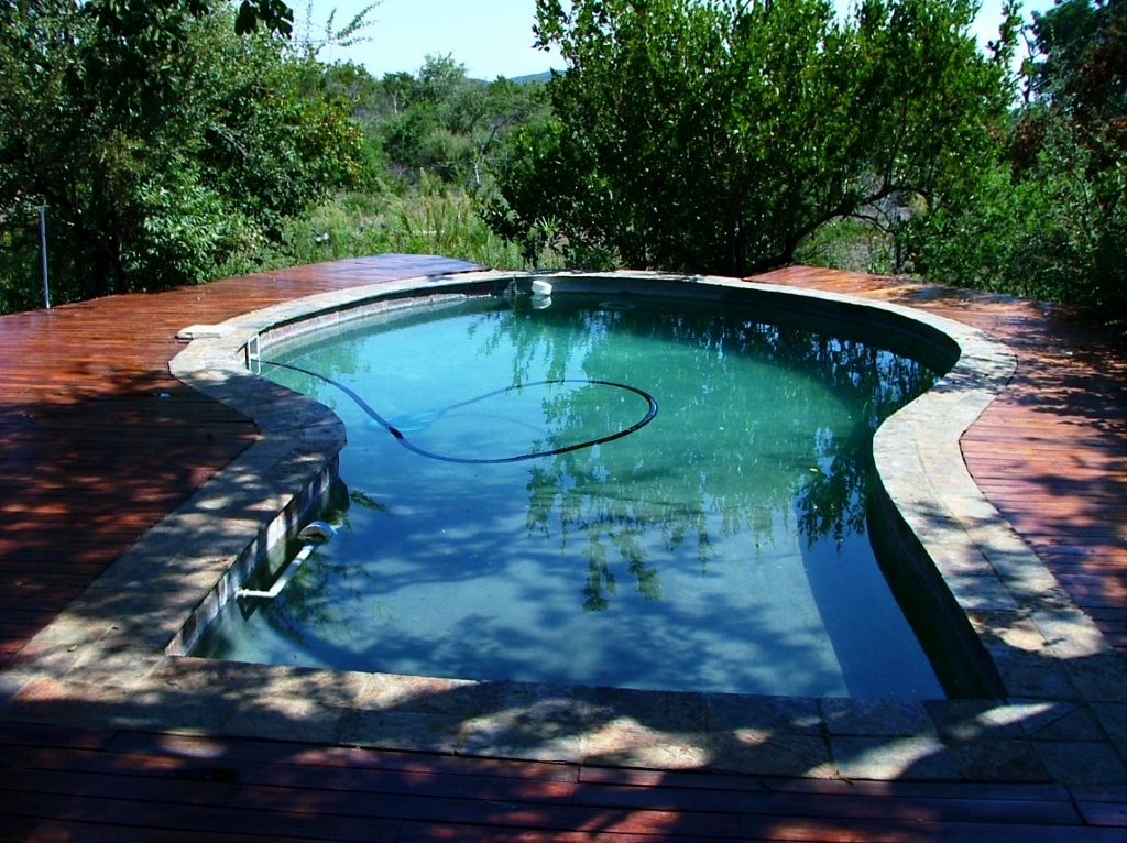 Kukama lodge's swimming pool